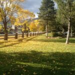 Fall at the Best Western Antlers